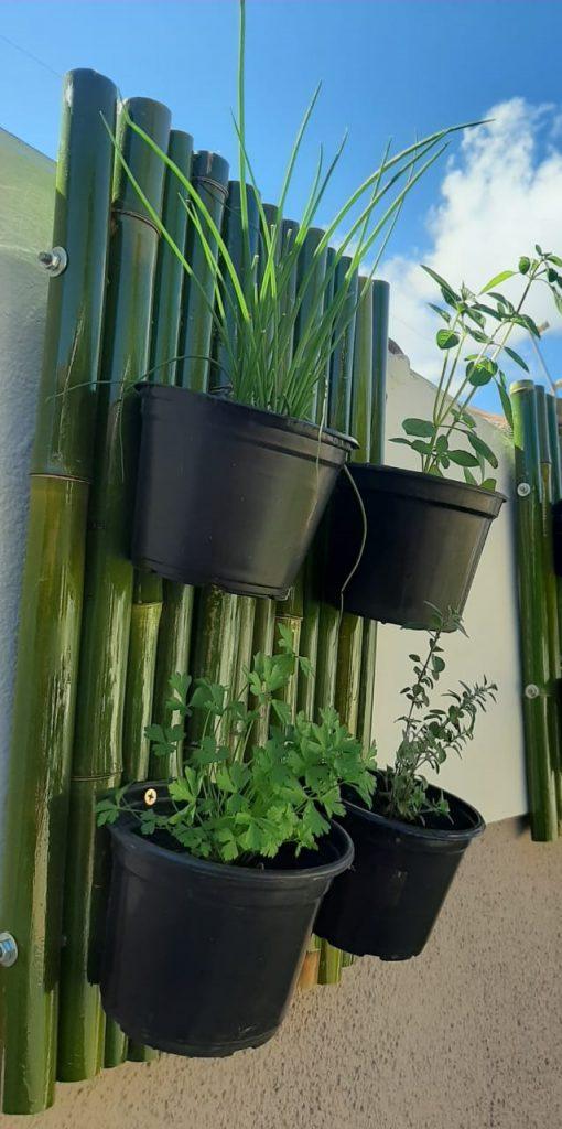 Exemplo de horta vertical